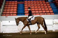Hunter - AQHA Novice Amateur