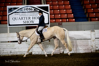 Hunter - AQHA Green