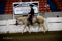 Western Pleasure - AQHA Junior