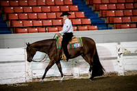 Western Pleasure - AQHA Green