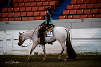 Western Pleasure - AQHA Amateur