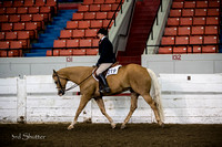 Hunter - AQHA Amateur Select