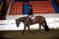 Hunter - AQHA Novice Youth