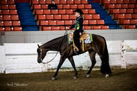 Western Pleasure - AQHA Novice Amateur